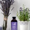 Organic Lavender Bath Oil Lovebee Products